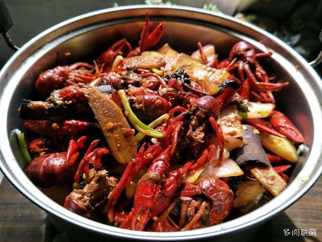 在深圳养的多肉
