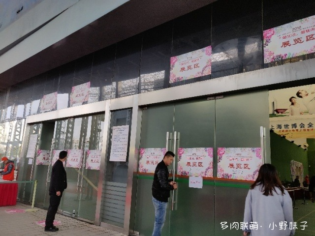 2018上海多肉展的多肉