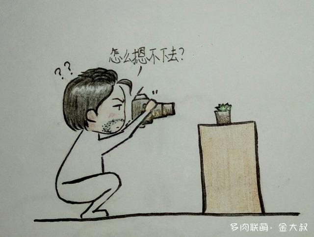 浙江绍兴冬天的多肉