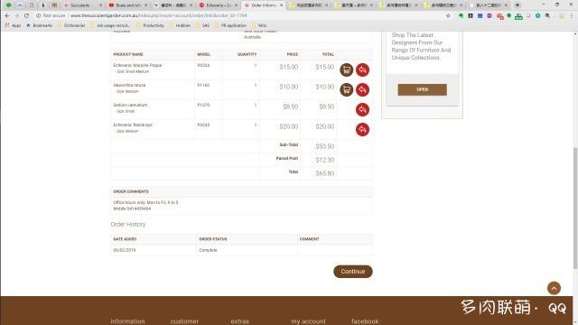 澳洲买的多肉价格