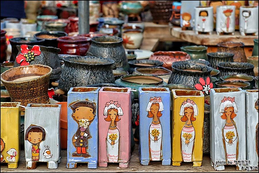 韩国龙仁市夏天的多肉大棚