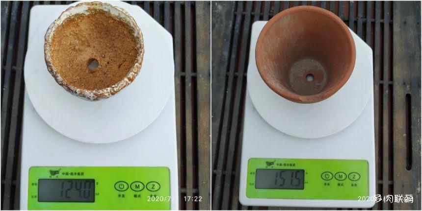 麦饭石花盆保水能力实验