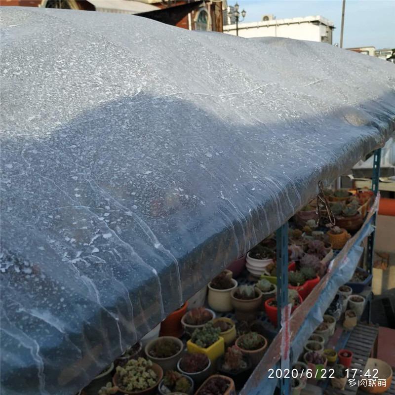 立凉降温剂使用效果