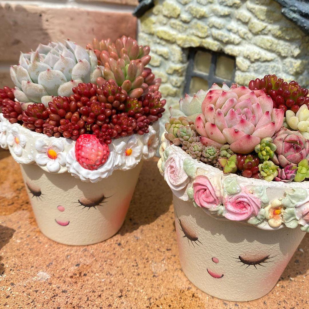 可爱的花盆